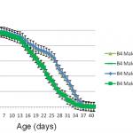 Stem Cell 100TM  Extends Male Drosophila Lifespan