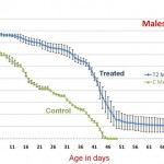 Stem Cell 100 Male Life Extension