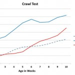 memex-crawl-test
