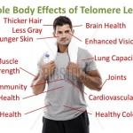 telomeres-man